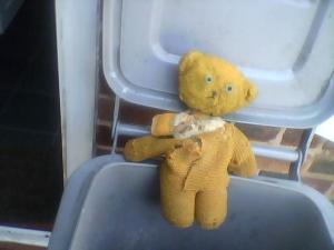 ted1 (1)